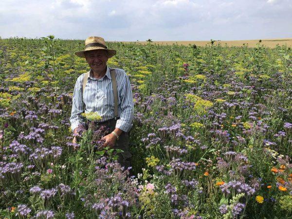 Landwirt inmitten einer blühenden Blühfläche