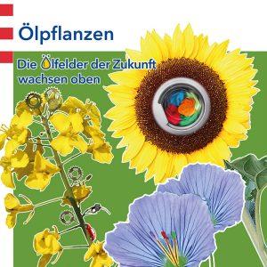 Poster: Ölpflanzen