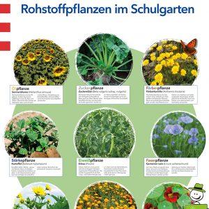 Poster: Rohstoffpflanzen im Schulgarten