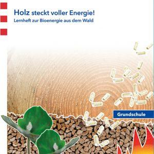 Schüler-Broschüre: Holz steckt voller Energie!