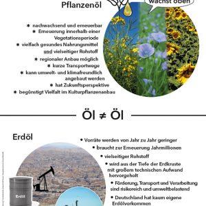 Lernpaket Ölpflanzen, Themenblatt