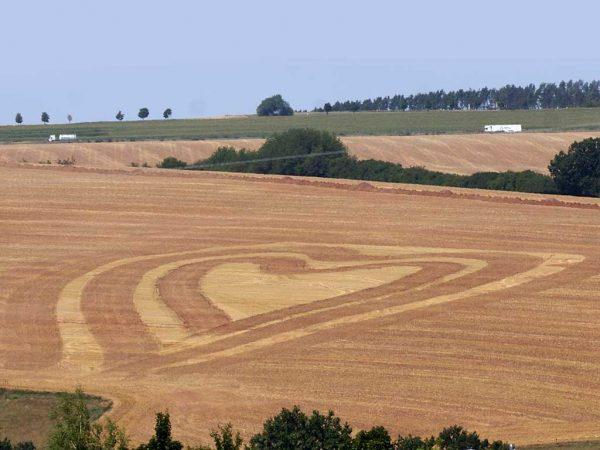Landwirtschaft mit Herz