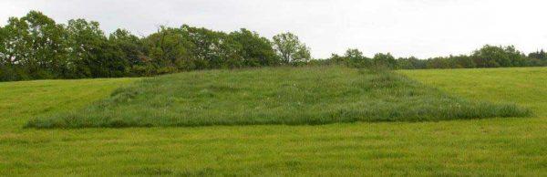 Wiesen mit vorübergehend stehengelassenem Grasstreifen