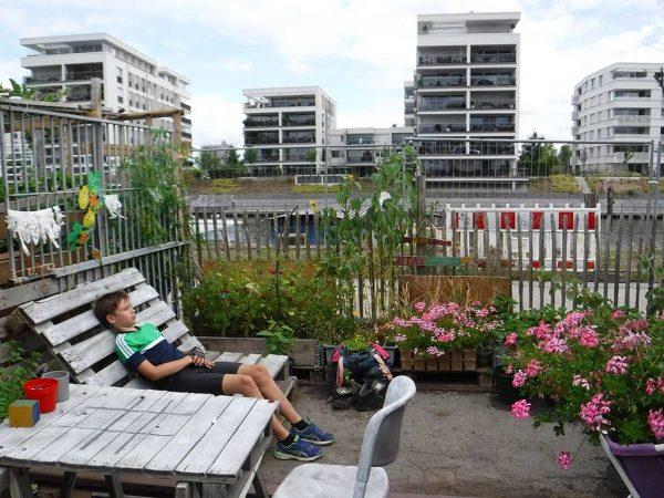 Ein urbaner Garten mit Hochbeeten und Sitzgelegenheiten aus Paletten, im Hintergrund der Main sowie neue Wohnbauten
