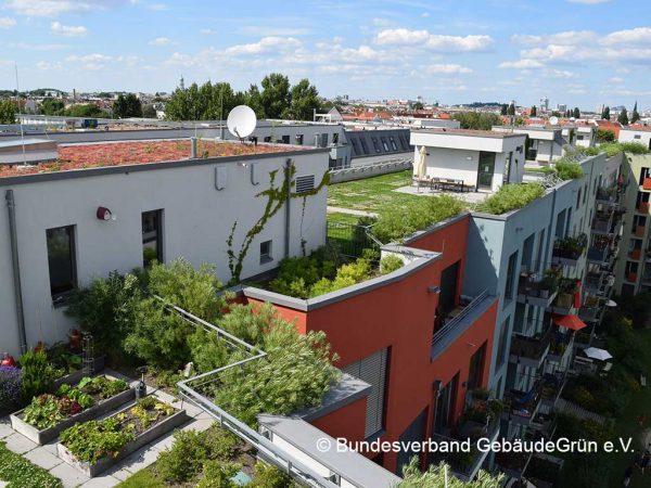 Auf Flachdächern angelegte Gärten