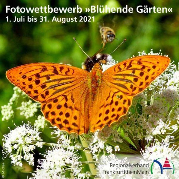 Fotowettbewerb Blühende Gärten; Foto: Michael Voll