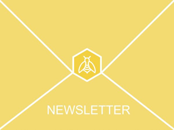 Newsletter, Bienen