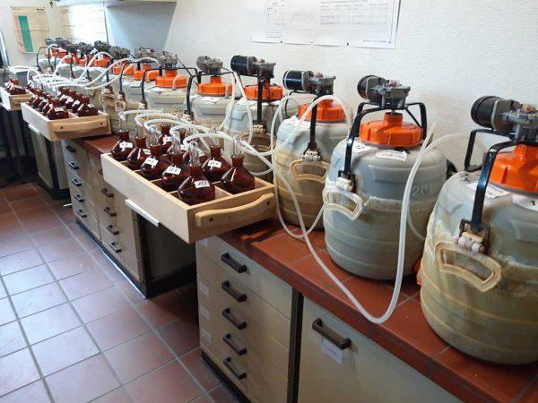Ausgasungsversuch Rindergülle und Biogasgärrest: 20 l-Behälter mit Rührwerk im Deckel und gezielter Abluftführung durch Waschflaschen mit Schwefelsäure zur Aufnahme des austretenden Ammoniaks