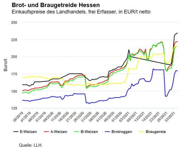 Preise für Brotgetreide Hessen, in EUR/t netto, frei Landlager