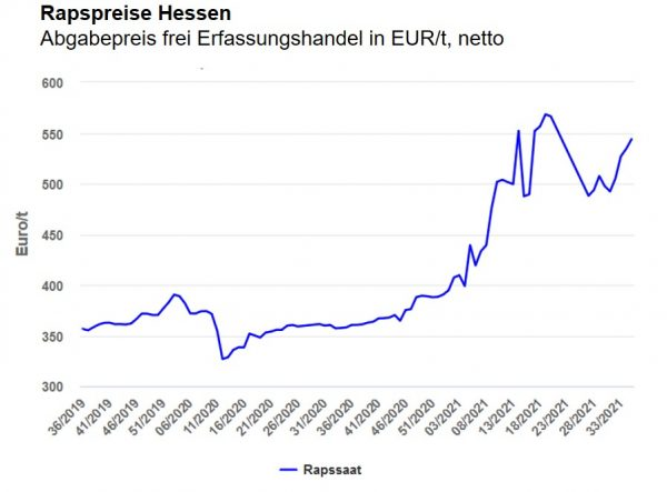 Rapspreise Hessen, in EUR/t netto, frei Landlager