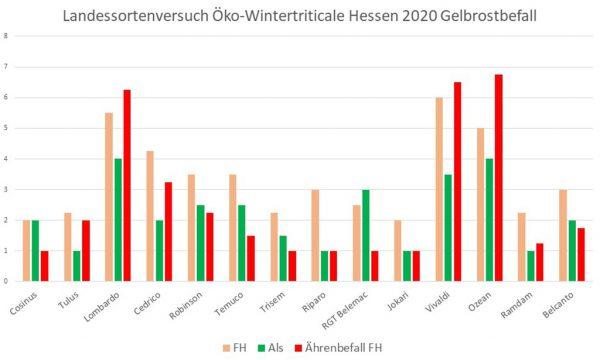 Diagramm: Landessortenversuch Öko-Wintertriticale Hessen 2020, Gelbrostbefall