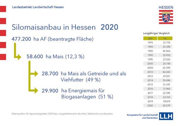 Grafik: Silomaisanbau in Hessen 2020
